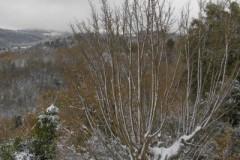 Χιόνια-29-12-2019_00074