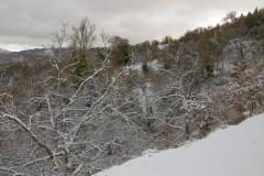 Χιόνια-29-12-2019_00075
