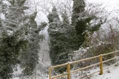 Χιόνια-29-12-2019_00080
