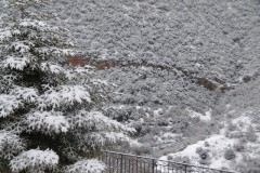 Χιόνια-29-12-2019_00092