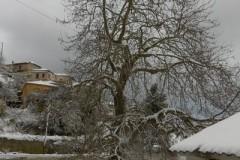 Χιόνια-29-12-2019_00095