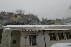 chionia-23-2-209_00008