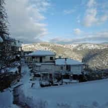 Χιονισμένος Έλατος